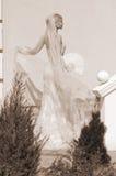 Braut mit Gebläse stockbild