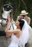 Braut mit Pferden Lizenzfreie Stockbilder