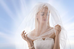Braut mit Schleier auf dem Gesicht betrachtet links Stockfotografie