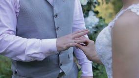 Braut trägt Ring auf Bräutigam ` s Finger Goldeheringe und Hände des gerade verheirateten Paars Der Braut- und Bräutigamaustausch stock video footage