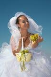 Braut u. Trauben Stockbilder