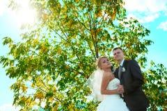 Braut und Bräutigam des blauen Himmels Stockfotografie
