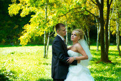 Braut und Bräutigam des grünen Parks Lizenzfreies Stockbild