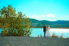 Braut und Bräutigam des grünen Parks Stockbilder