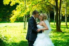 Braut und Bräutigam des grünen Parks Stockfoto