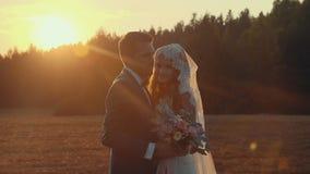 Braut und Bräutigam, die auf einem Gebiet mit grünem Rasen in der untergehenden Sonne küssen stock video