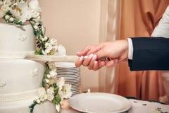 Braut und Bräutigam, die den Hochzeitskuchen schneiden Lizenzfreie Stockfotos