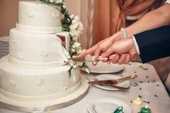 Braut und Bräutigam, die den Hochzeitskuchen schneiden Stockfotos