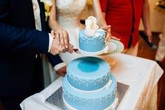 Braut und Bräutigam, die den Hochzeitskuchen schneiden Lizenzfreies Stockbild