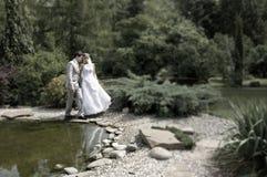 Braut und Bräutigam, die in den Park gehen stockfotografie