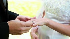 Braut und Bräutigam, die Eheringe austauschen stock video