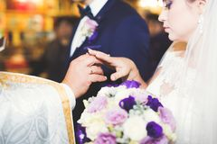 Braut und Bräutigam, die Eheringe austauschen Stilvolle Paarbeamtzeremonie stockbild