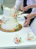 Braut und Bräutigam, die eine Hochzeitstorte schneiden lizenzfreies stockbild