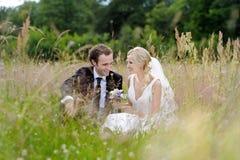 Braut und Bräutigam, die in einer Wiese sitzen Stockbild