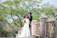 Braut und Bräutigam, die Hand und Weg im Garten halten Stockfoto