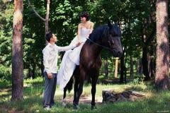 Braut und Bräutigam, die im Garten mit einem Pferd aufwerfen lizenzfreie stockfotografie