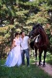 Braut und Bräutigam, die im Garten mit einem Pferd aufwerfen stockbilder