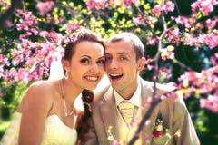 Braut und Bräutigam, die im Park aufwerfen lizenzfreies stockfoto