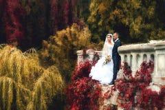 Braut und Bräutigam, die im Park aufwerfen stockbilder