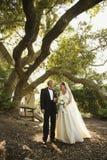 Braut und Bräutigam draußen Stockfoto