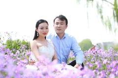 Braut und Bräutigam im Hochzeitskleid mit der eleganten Frisur, die auf dem Orychophragmus-violaceus Blumengebiet sitzt Lizenzfreie Stockbilder
