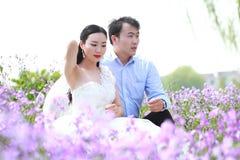 Braut und Bräutigam im Hochzeitskleid mit der eleganten Frisur, die auf dem Orychophragmus-violaceus Blumengebiet sitzt Lizenzfreie Stockfotos