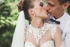 Braut und Bräutigam im Wald stockfotos