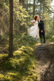 Braut und Bräutigam im Wald mit weichem Fokus Stockfotografie