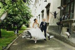 Braut und Bräutigam laufen entlang einen Altbau, der weg das pigeo fährt Stockfotos