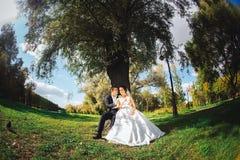 Braut und Bräutigam mit Süßigkeiten in den Händen Stockfotografie