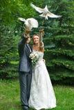 Braut und Bräutigam mit Tauben Stockfotografie