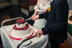 Braut und Bräutigam schnitten den Kuchen Lizenzfreies Stockfoto
