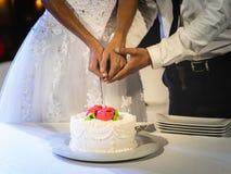 Braut und Bräutigam schnitten zusammen Kuchen an ihrer Hochzeit lizenzfreie stockfotografie