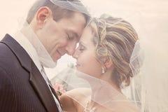 Braut und Bräutigam unter Schleier stockfotografie