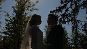 Braut- und Bräutigamhaltung zum Fotografen im Freien stock video footage