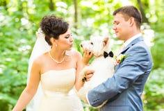 Braut- und Bräutigamhochzeit mit dem reizenden weißen Hundesommer im Freien Lizenzfreie Stockbilder