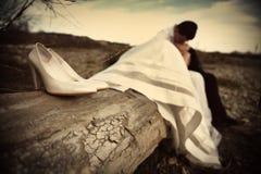 Braut- und Bräutigamküssen Stockbilder