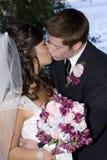 Braut- und Bräutigamküssen Lizenzfreie Stockfotos