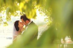 Braut- und Bräutigamliebe Lizenzfreies Stockfoto