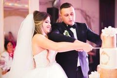 Braut und Br?utigam an der Hochzeit, welche die Hochzeitstorte schneidet stockfotografie