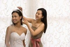 Braut- und Brautjunferportrait. Stockbild