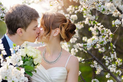 Braut und Bräutigam am Park Weg des Hochzeitskusses im Frühjahr Lizenzfreies Stockbild