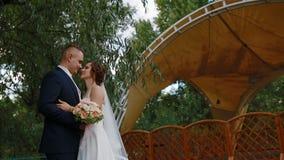 Braut und froom, die in das yeard streicheln stock video footage
