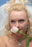 Braut und Rosa stiegen Stockbilder