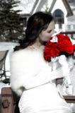 Braut und rote Rosen Stockfotografie