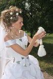 Braut und Taube Stockfotografie