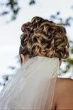 Braut-Updo-Haar mit Schleier Lizenzfreie Stockfotografie