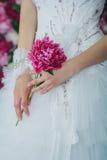 Braut, welche die Pfingstrosenblume hält Stockfoto
