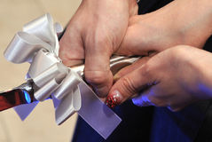 Brautbild Lizenzfreie Stockbilder
