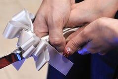 Brautbild Lizenzfreies Stockbild
